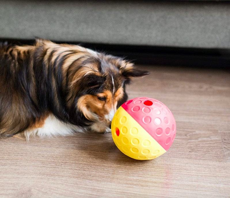 The yellow and pink ball which has holes from which the treats fall