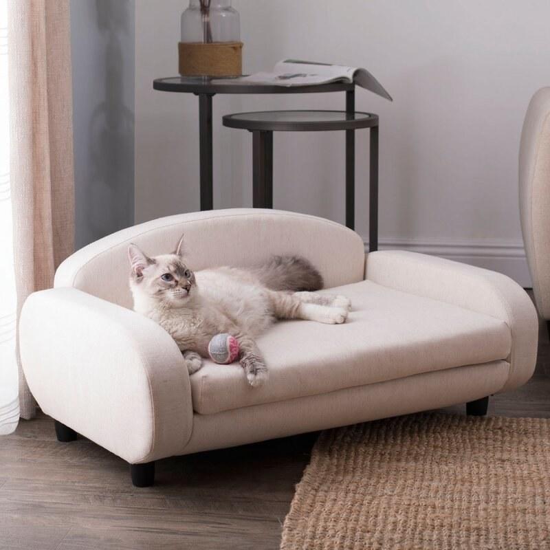 a cat on the beige mini sofa/bed