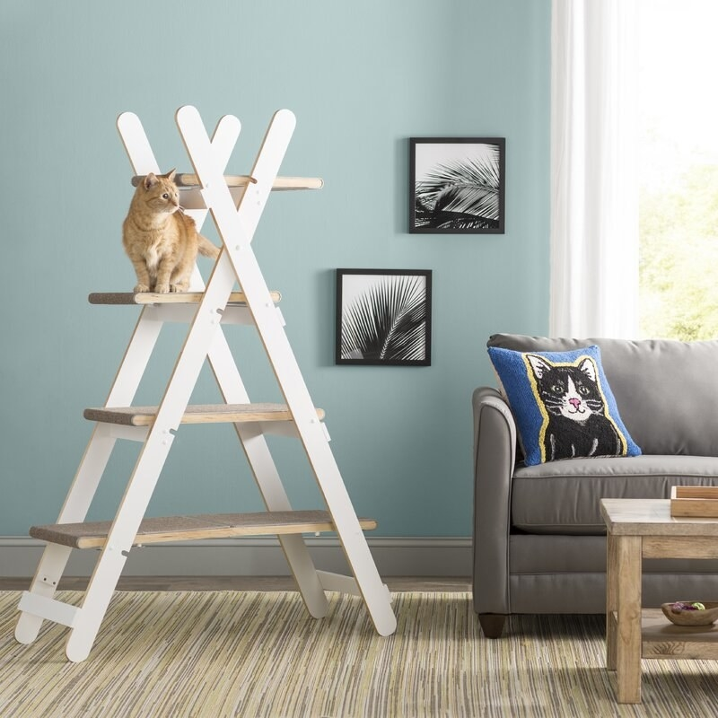 the four tier, X-shaped cat tree