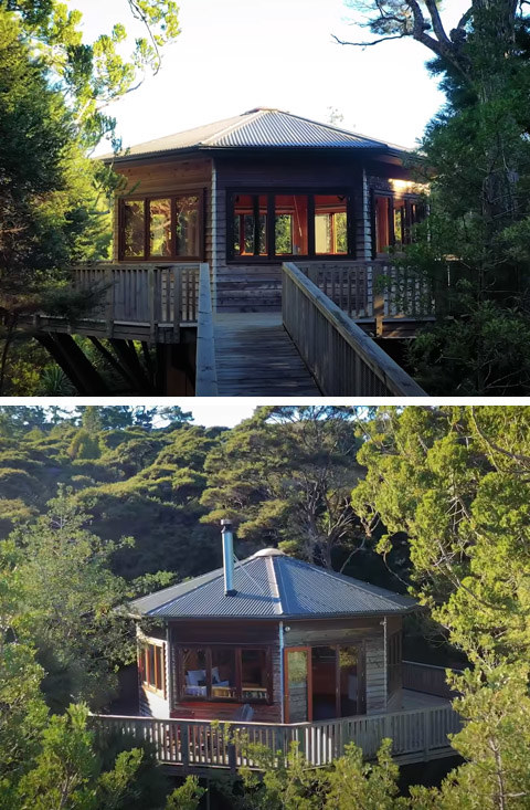 A captivating circular tree house with a porch that's completely surrounded by trees