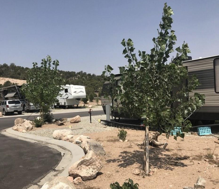 RVs parked along paved area