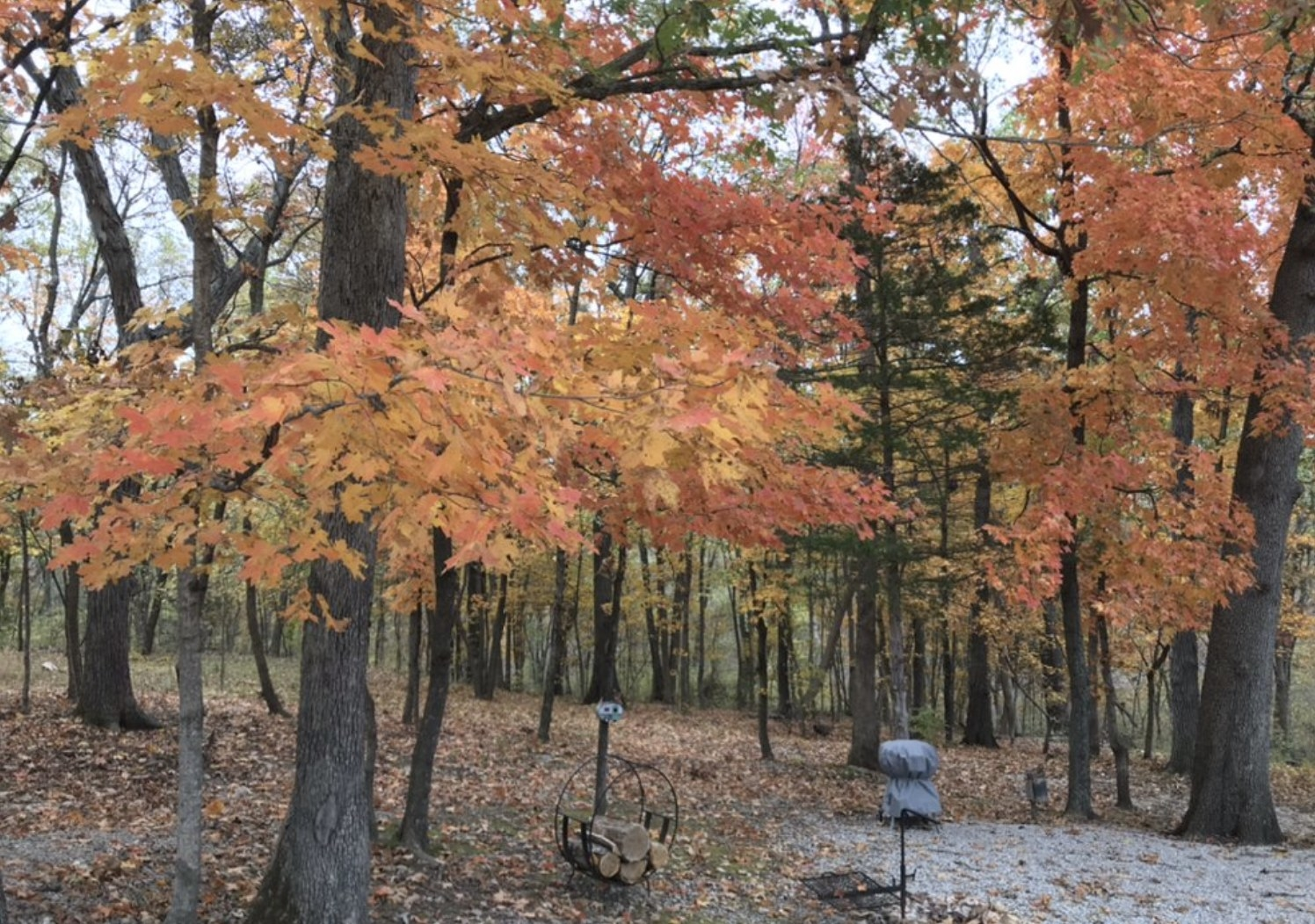 Campground in the fall