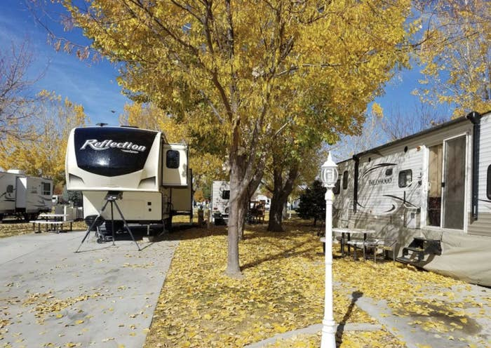 RVs parked under fall colors