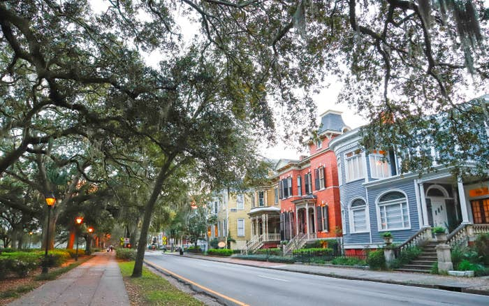 Colorful homes on a treelined street