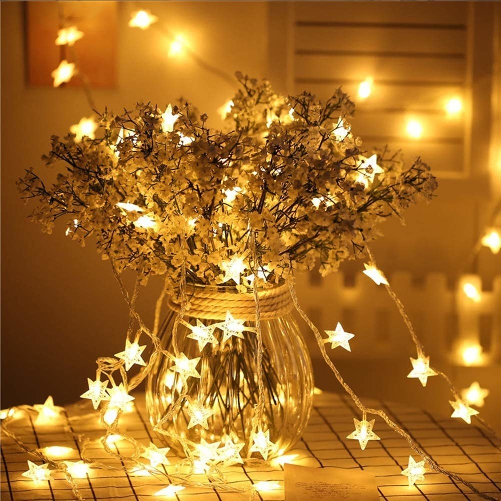 The lights are draped around a plant