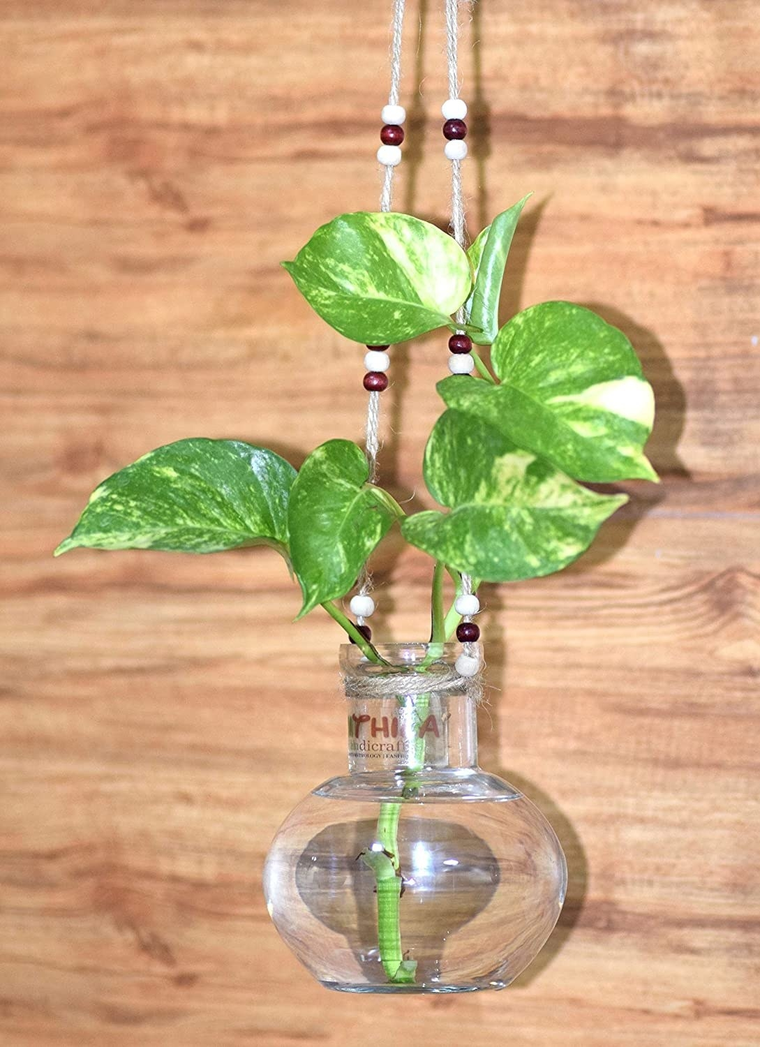 A transparent hanging vase with water and a plant in it