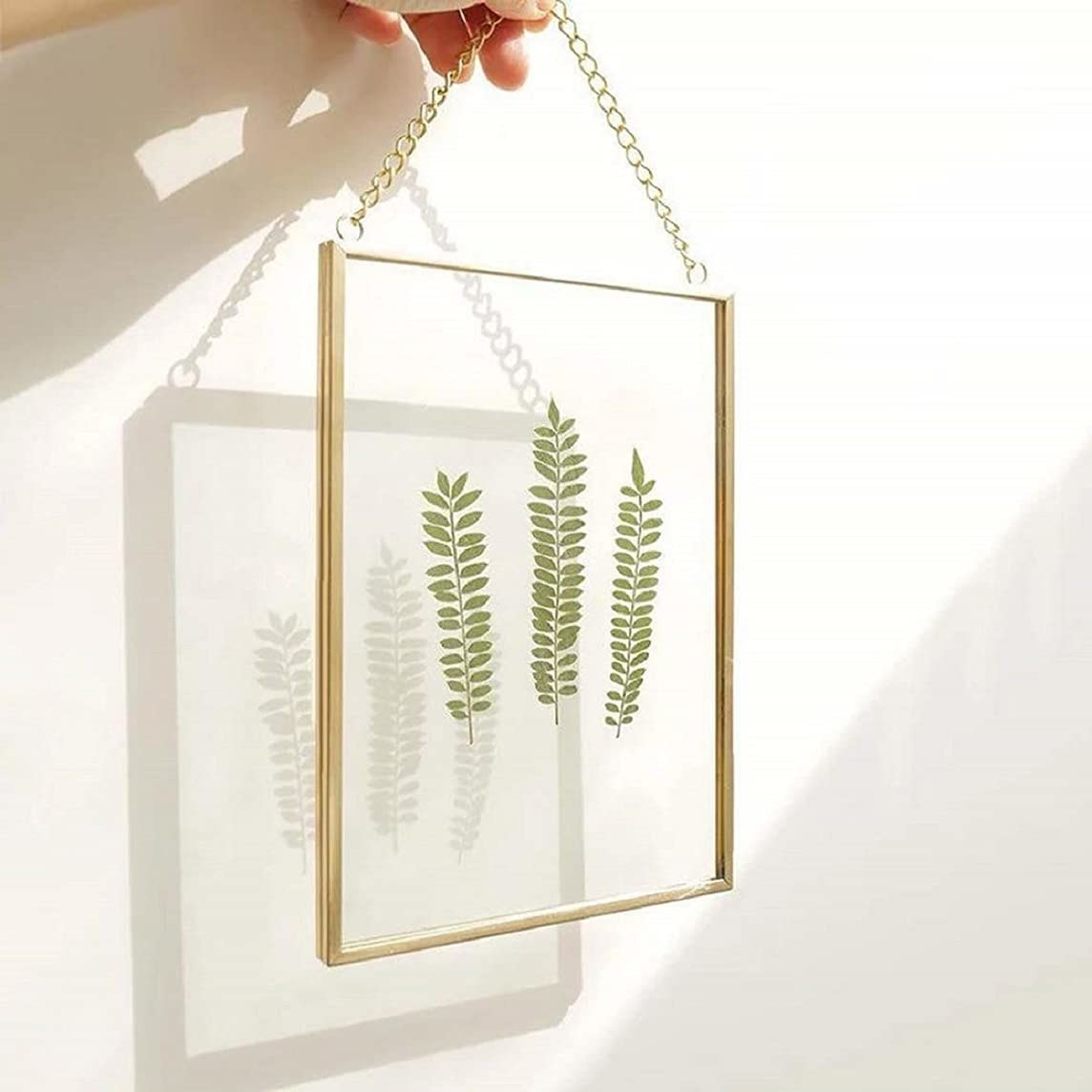 A transparent glass frame with metal borders painted in gold with 3 stems of leaves inside