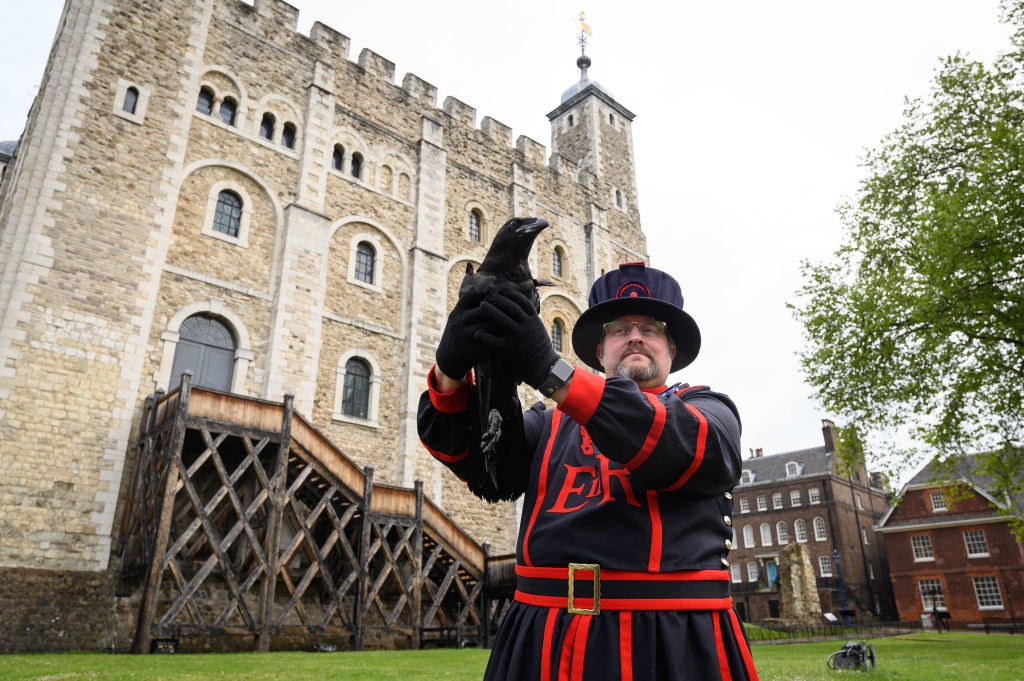 A Tower of London guard holds a Raven