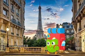 Duo owl in Paris