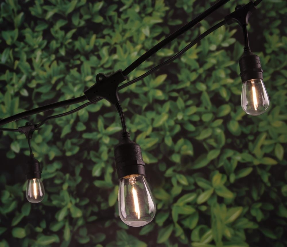 An image of Edison-style string lights