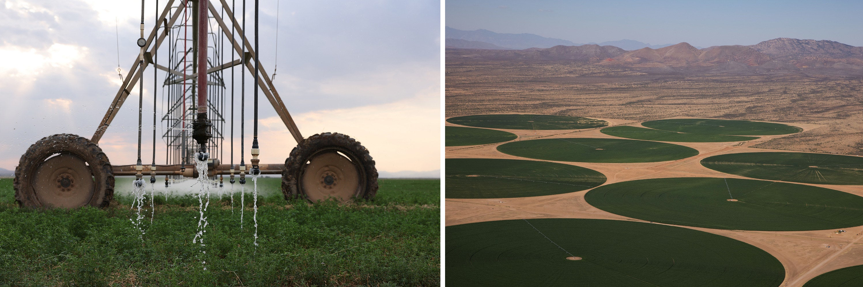Side-by-side images show an irrigation machine standing in a lush field of vegetation, and an overhead view of crops