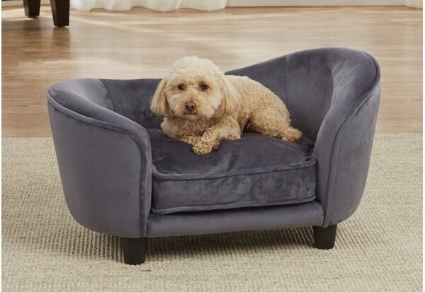 a dog sitting on a gray miniature couch