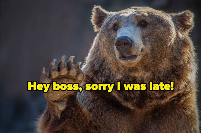 """""""hey boss, sorry I was late"""" over a brown bear waving a paw"""