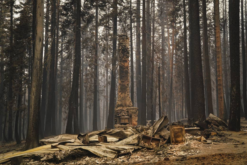 A lone chimney stands in a forest, surrounded by rubble from a destroyed structure