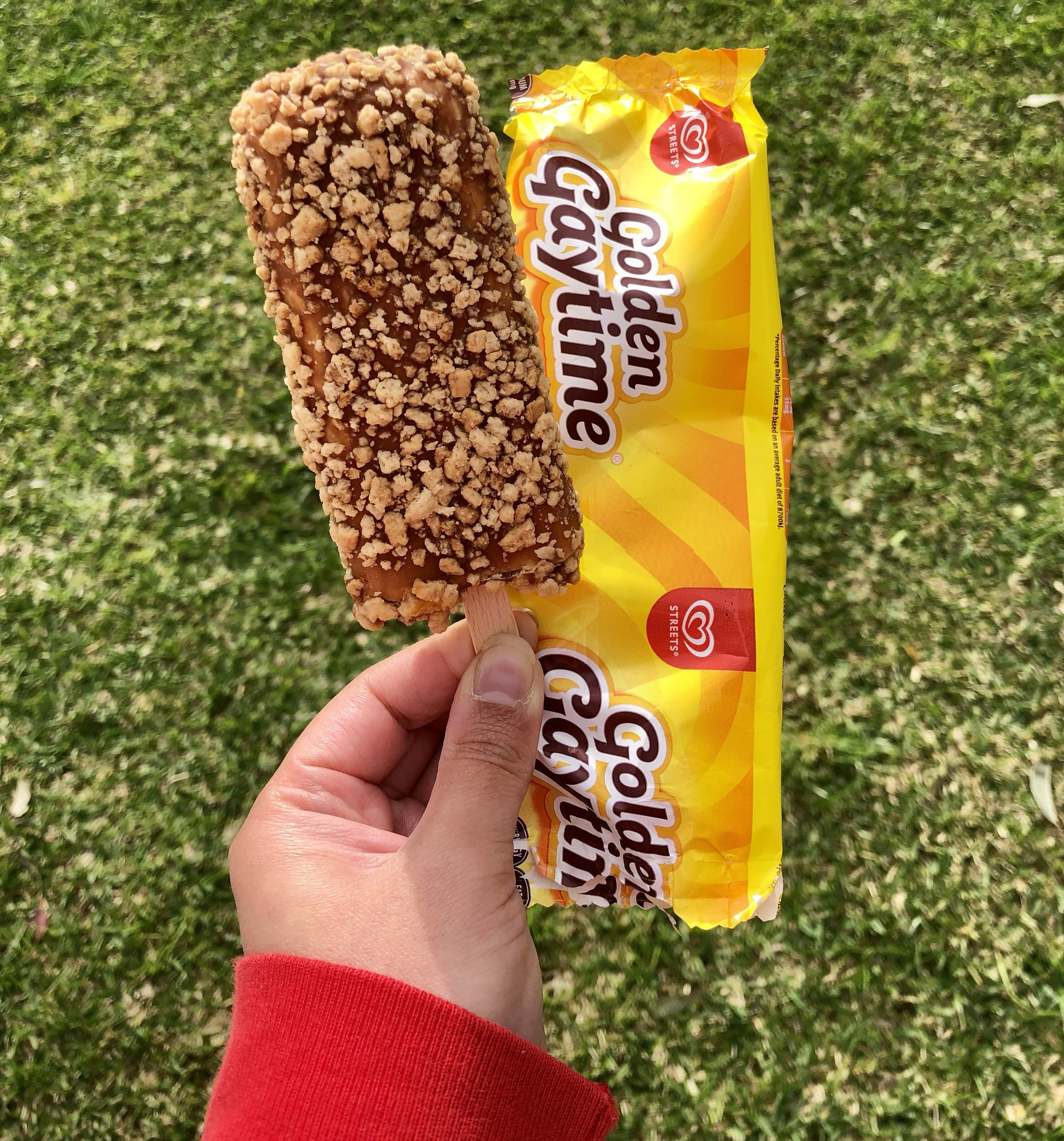 A hand holding a Golden Gaytime ice cream