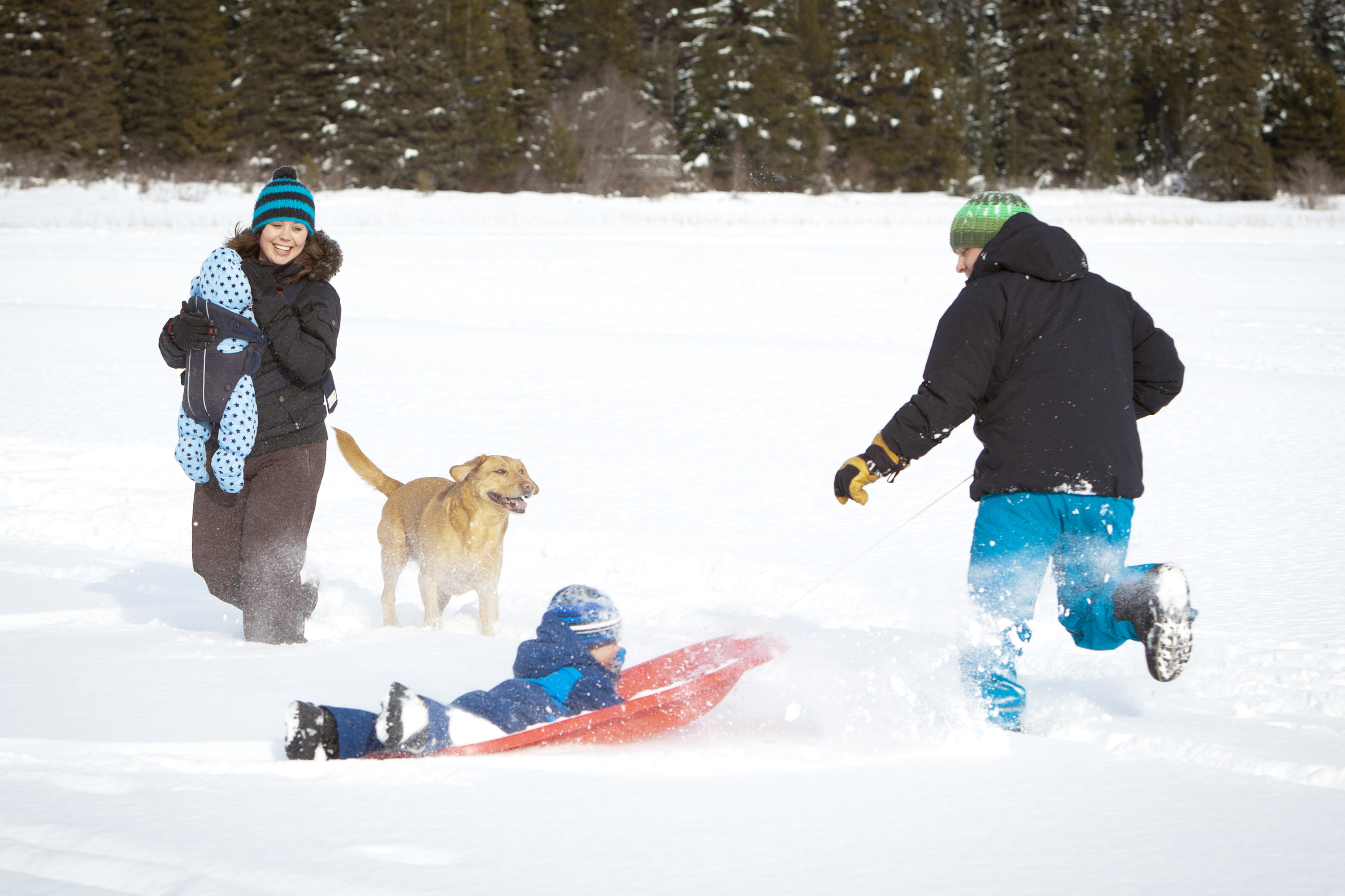 Parents with two small boys and dog enjoying winter outside.