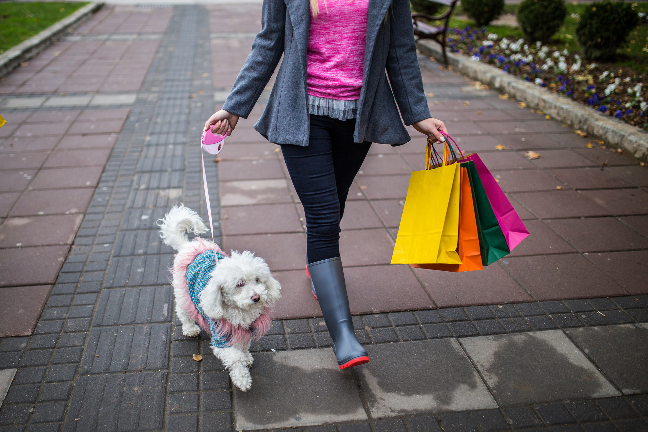 Young woman and a dog going for a walk with shopping bags.