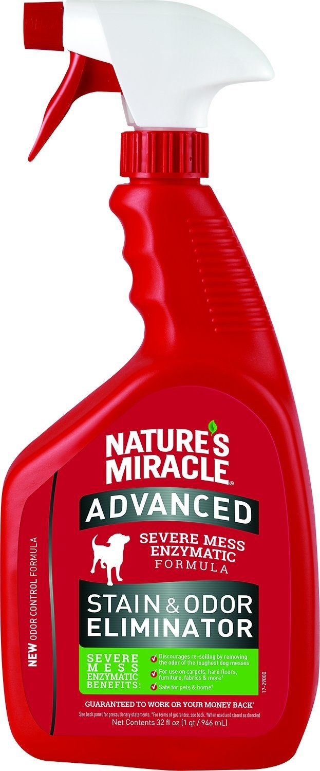 A squeeze bottle of stain & odor eliminator.