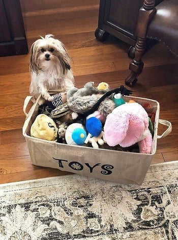 Reviewer's photo showing their dog standing next to the burlap bin full of toys