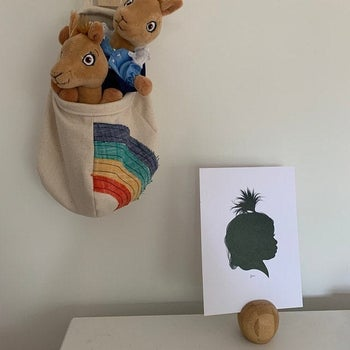 Reviewer's photo showing a rainbow pod holding stuffed animals and hanging on the wall