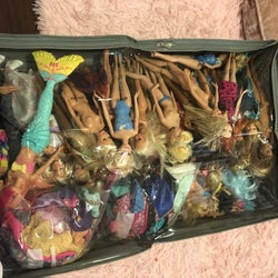 Reviewer's photo showing dolls stored in the underbed  bag