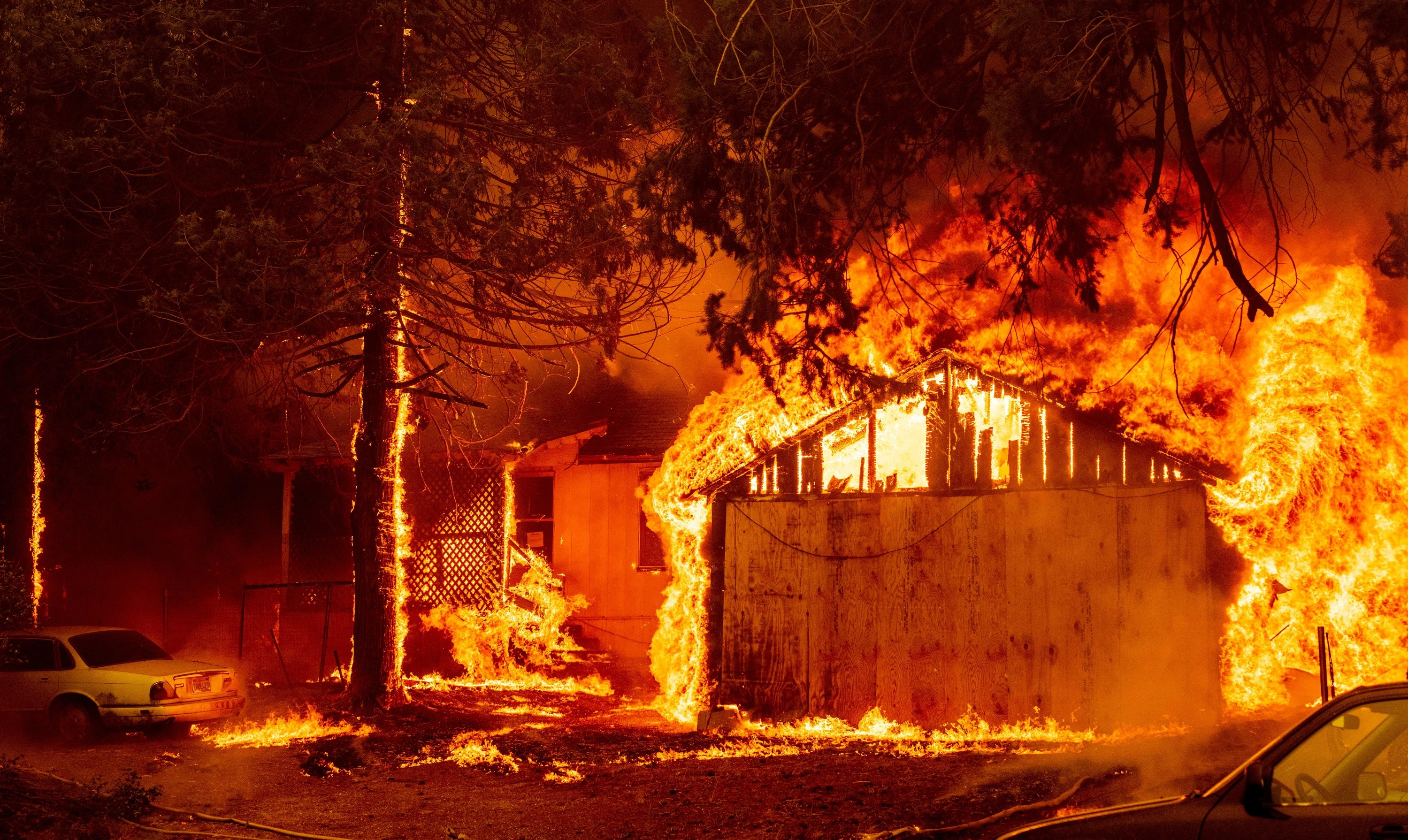 A car, tree, and home all ablaze at night