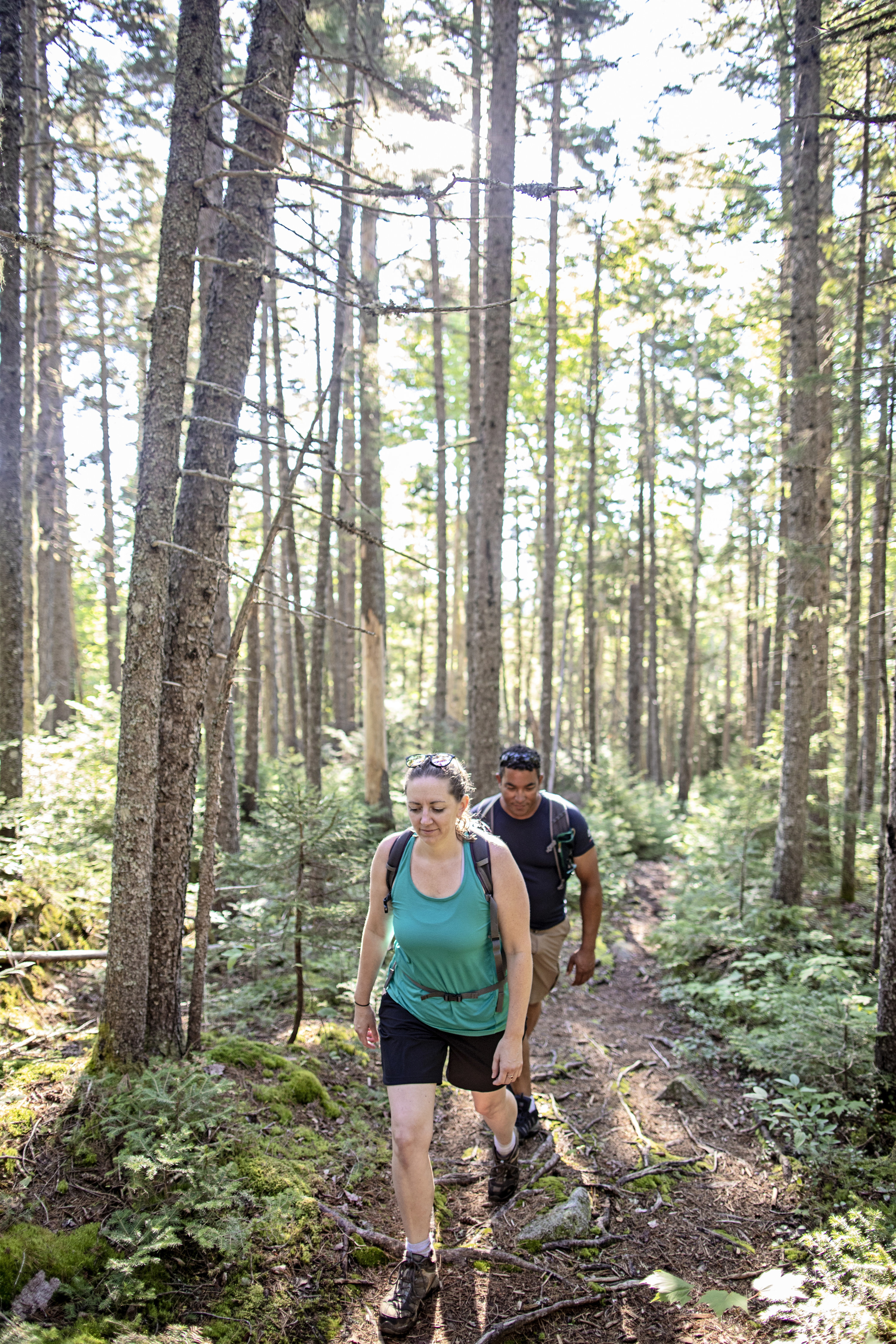 Two people wearing hiking boots walk through a sunny Appalachian trail.