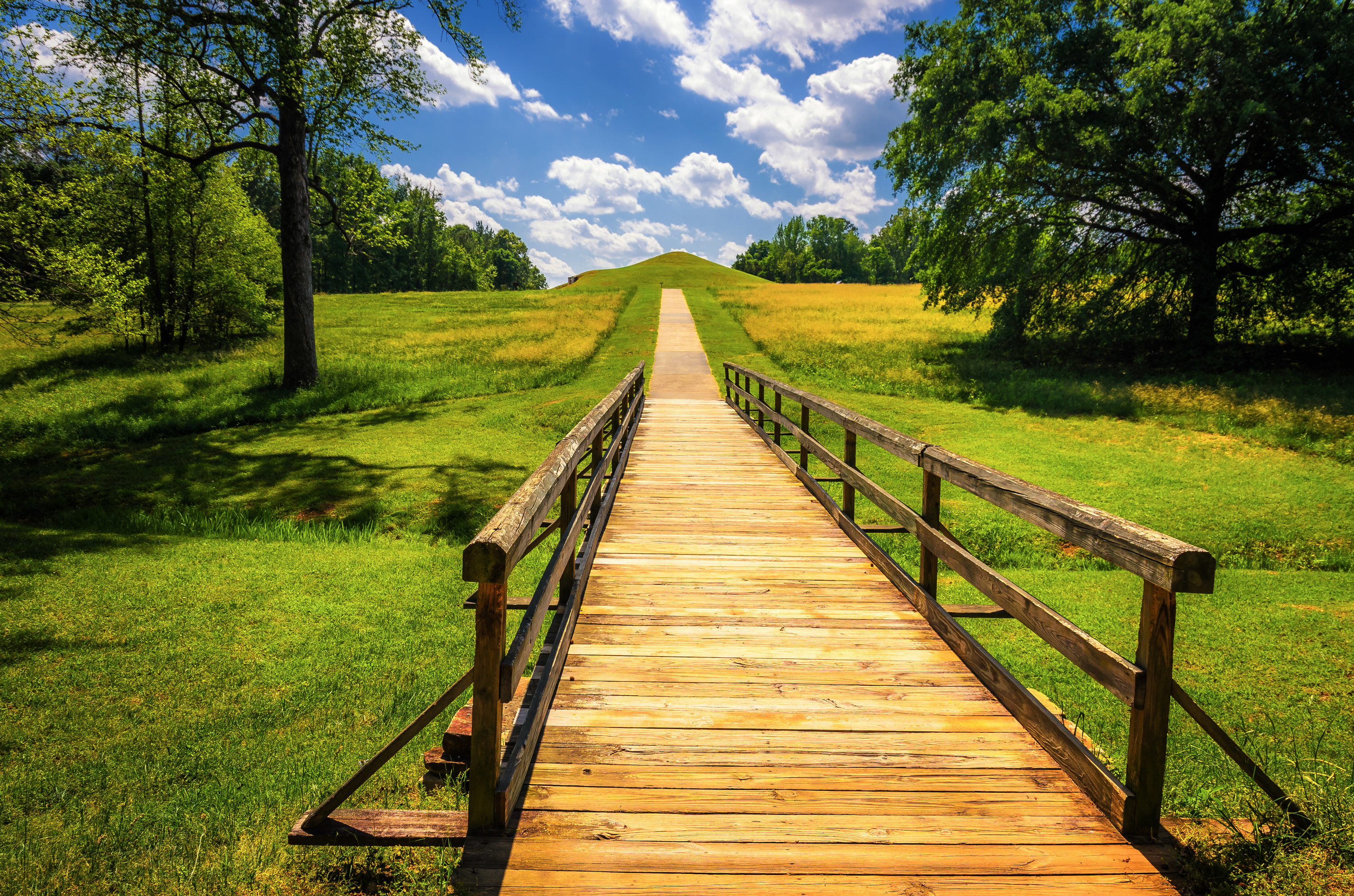 A boardwalk cuts through a grassy area toward the Ocmulgee Mounds.