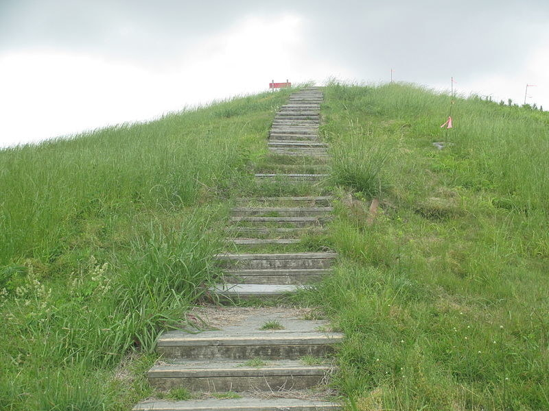 Stone steps lead toward the top of Poverty Point national monument.