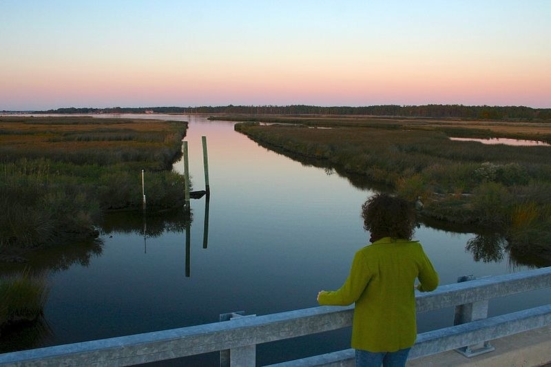 A woman looks out of fence toward Steward's Canal.