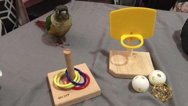 review photo of tabletop toy in wood with plastic rings and a basketball hoop with balls