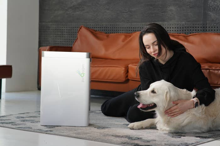 Model with dog on floor in front of box shaped air purifier