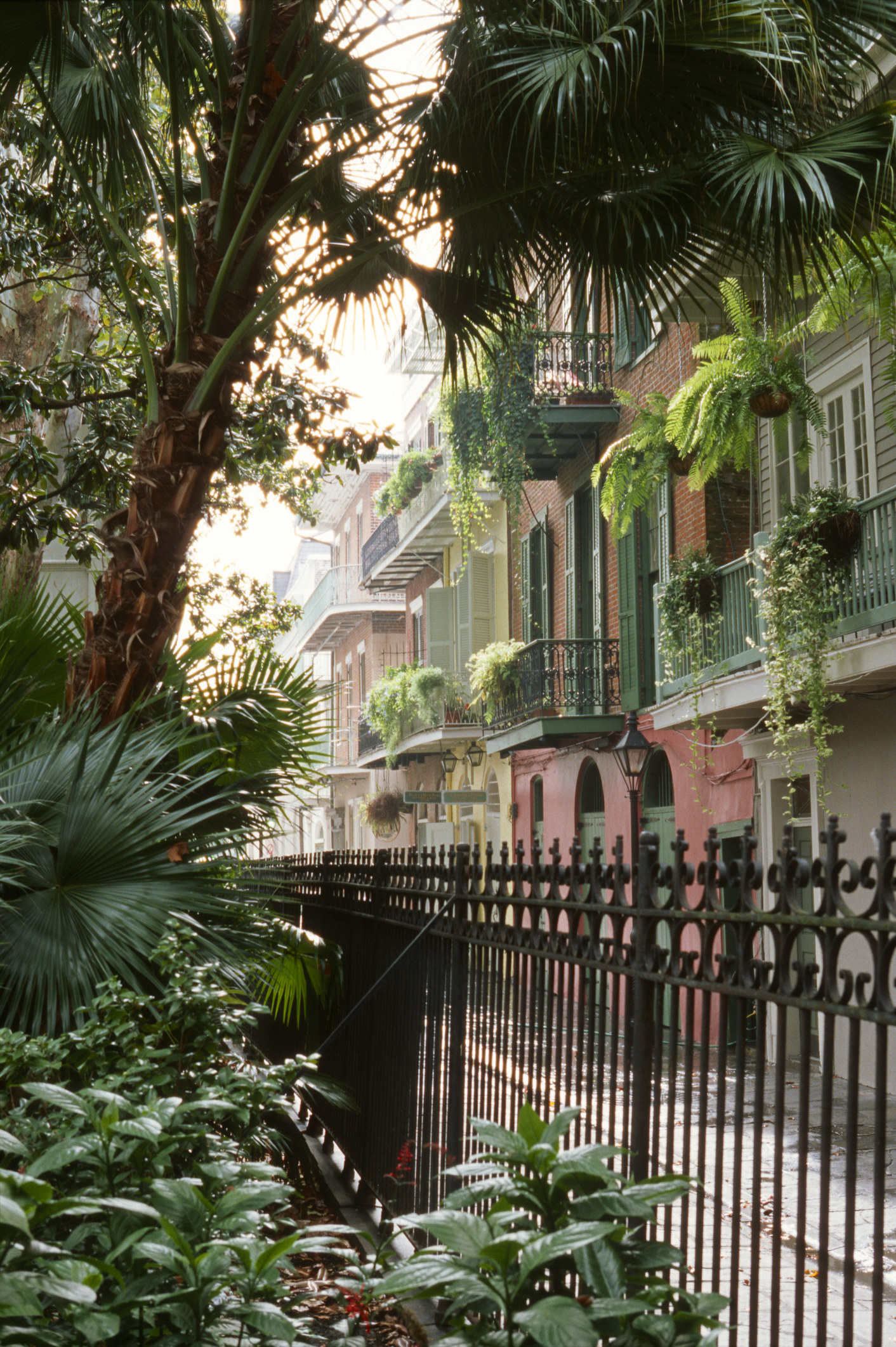 Beautiful buildings in the French quarter of New Orleans.