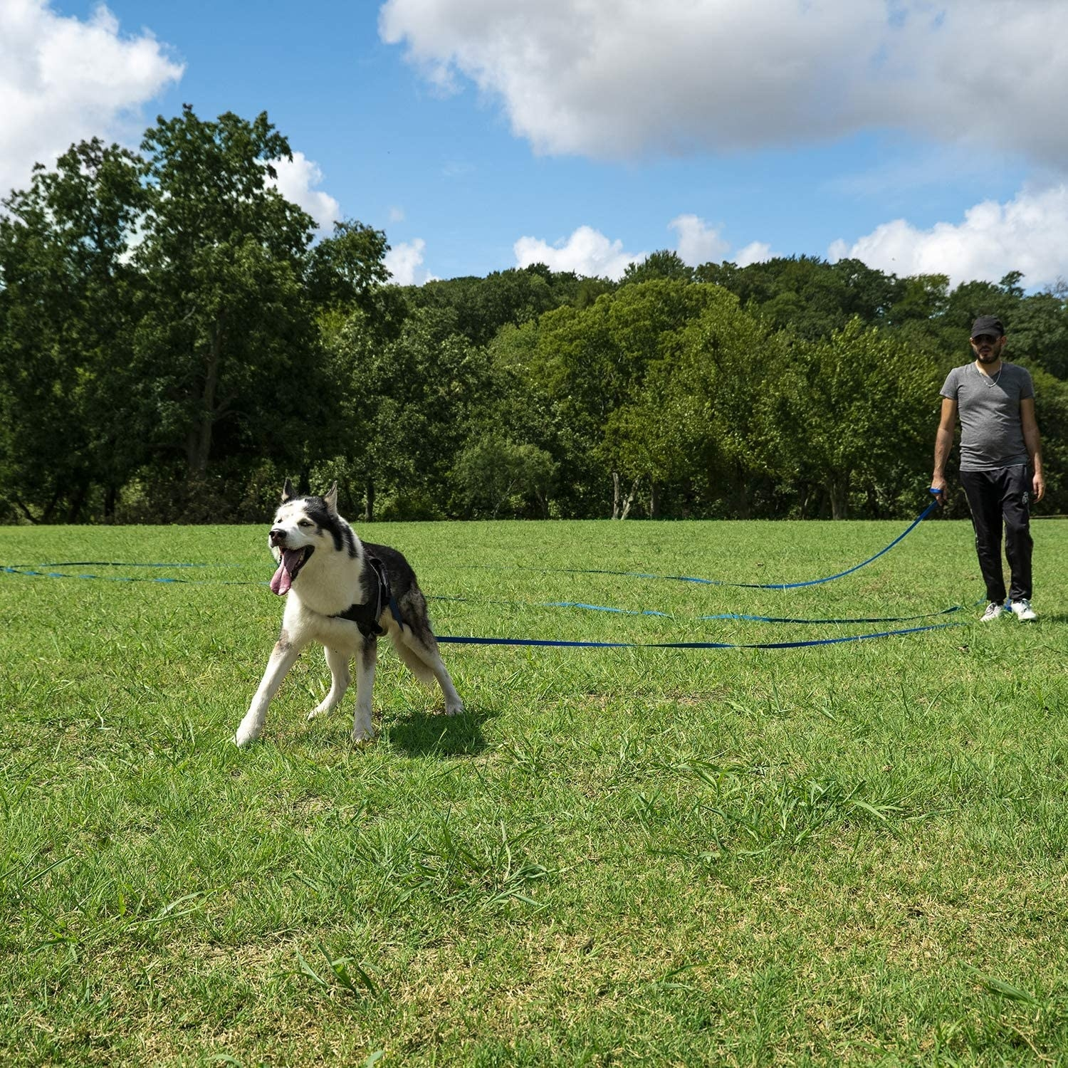 A person is watching their dog run in a field with a long recall leash