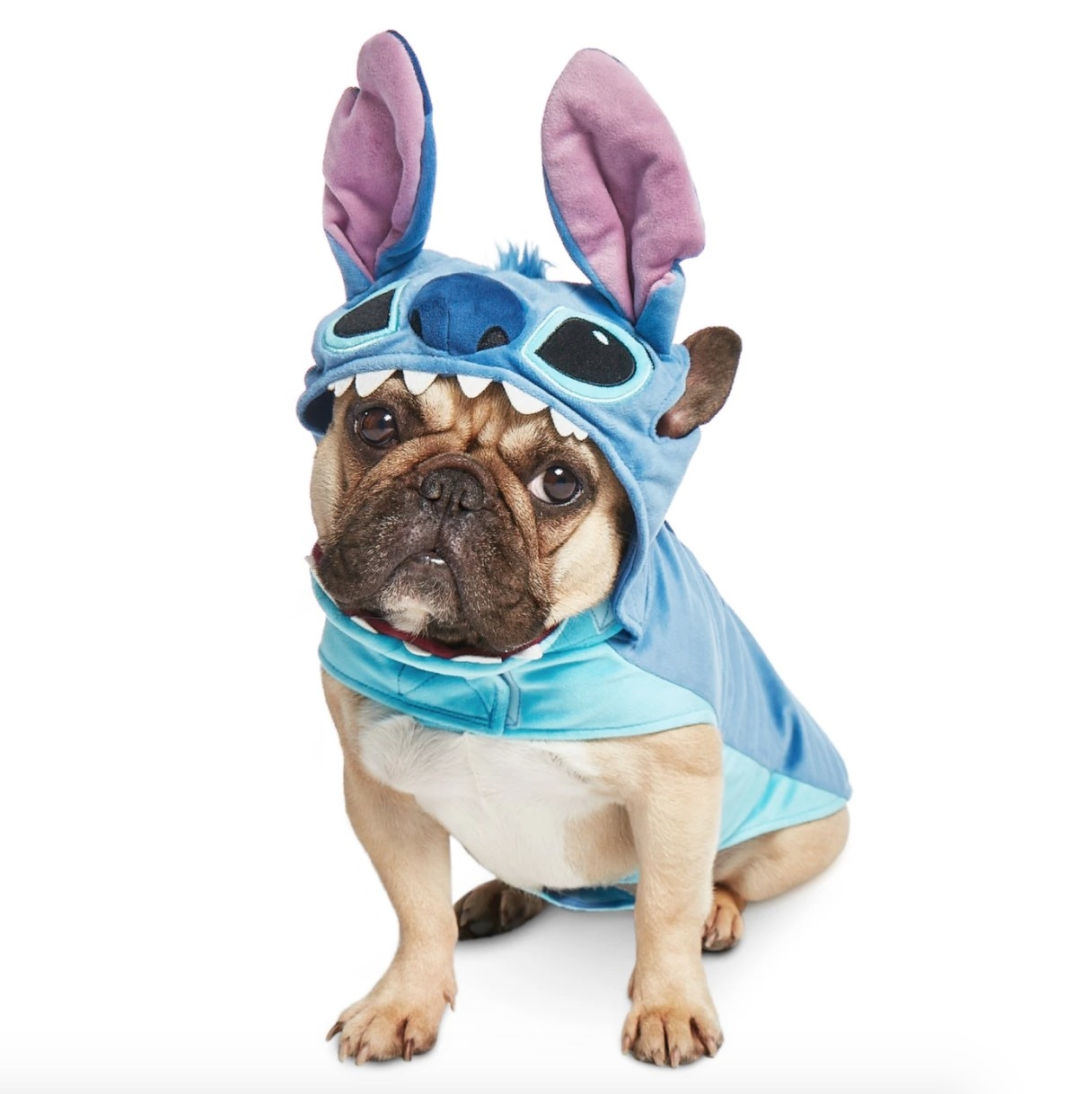 blue Stitch dog costume including ears and eyes