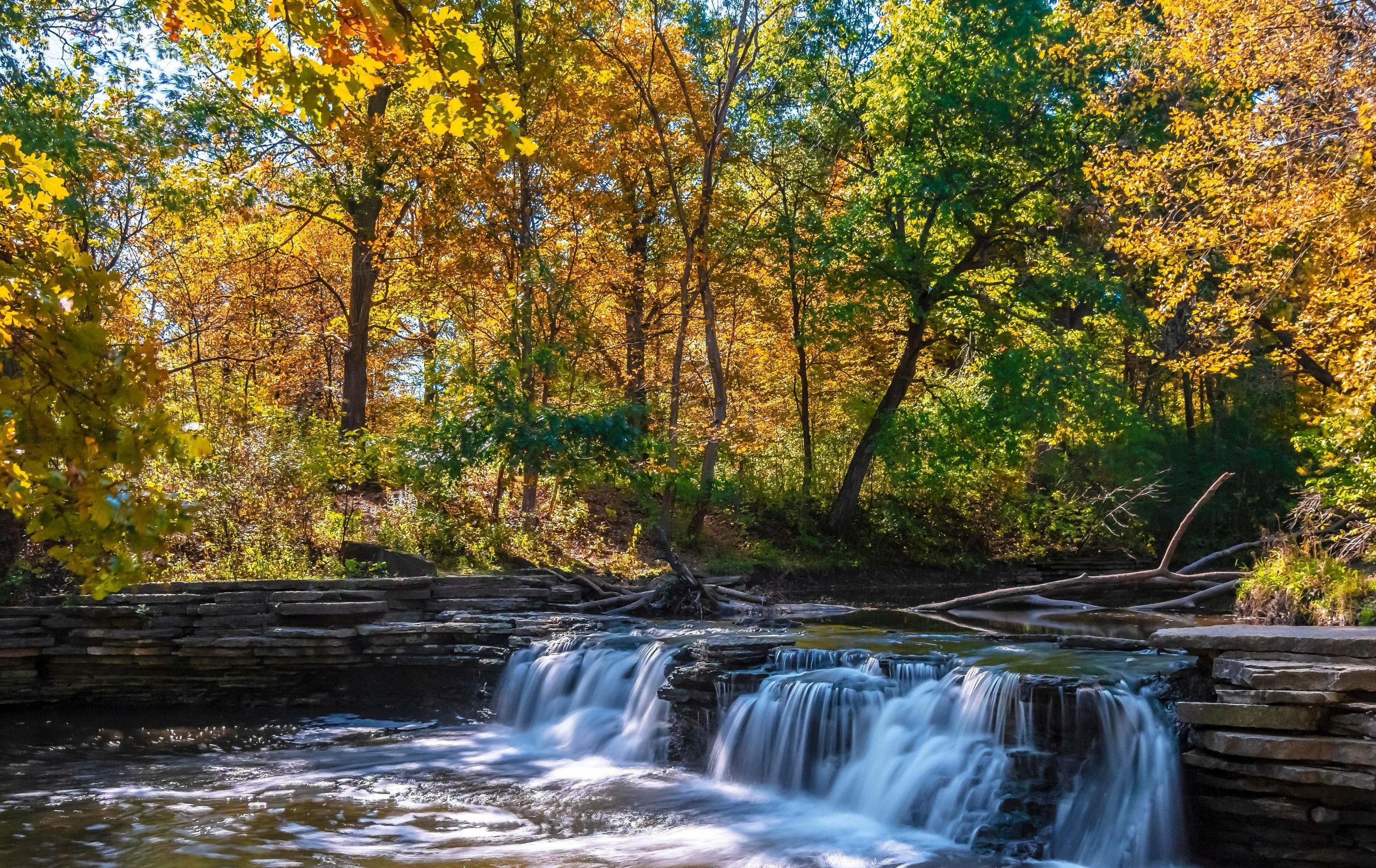 Photo of a waterfall at theWaterfall Glen Forest Preserve