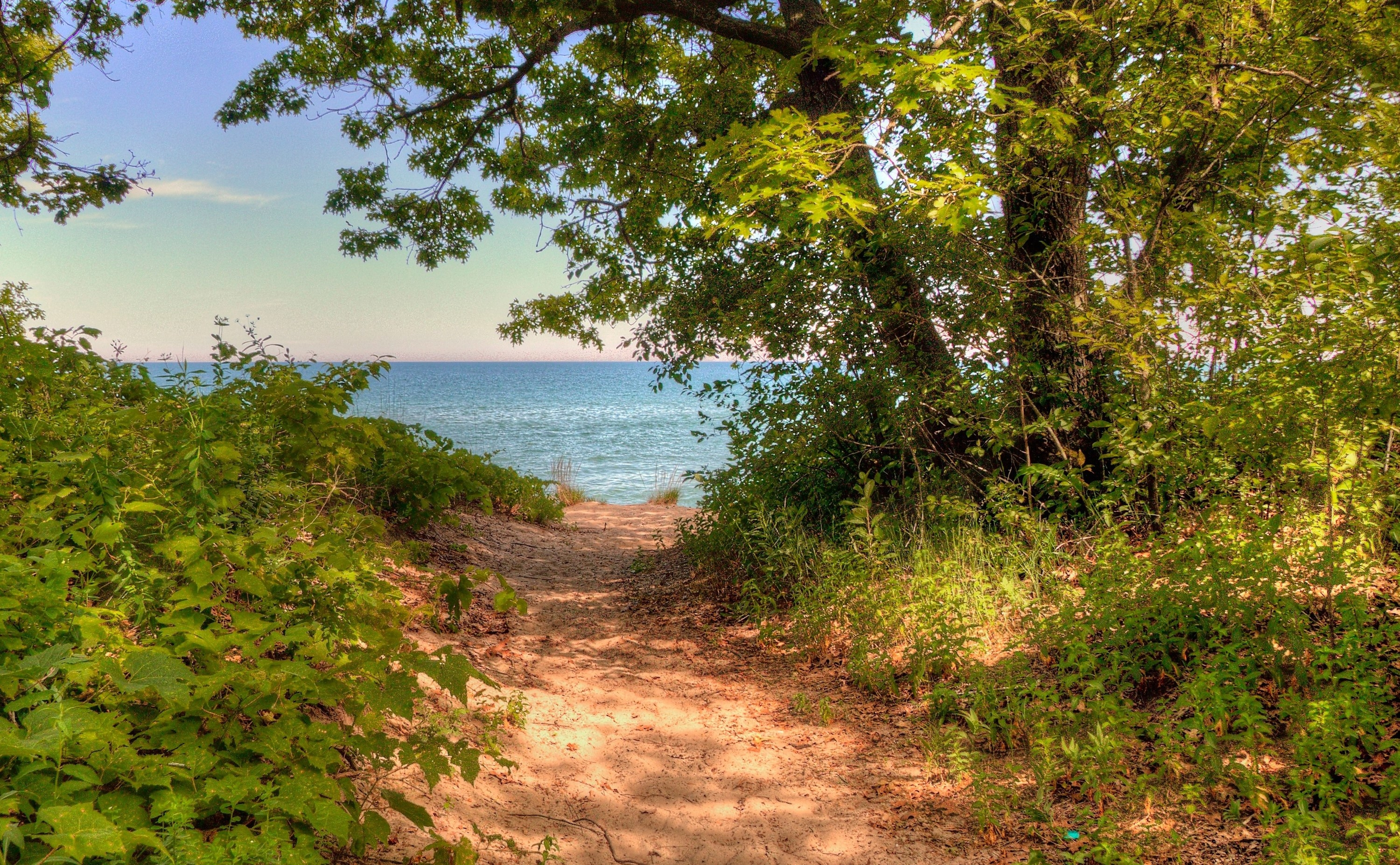 Photo of a trail leading to water at theIllinois Beach State Park