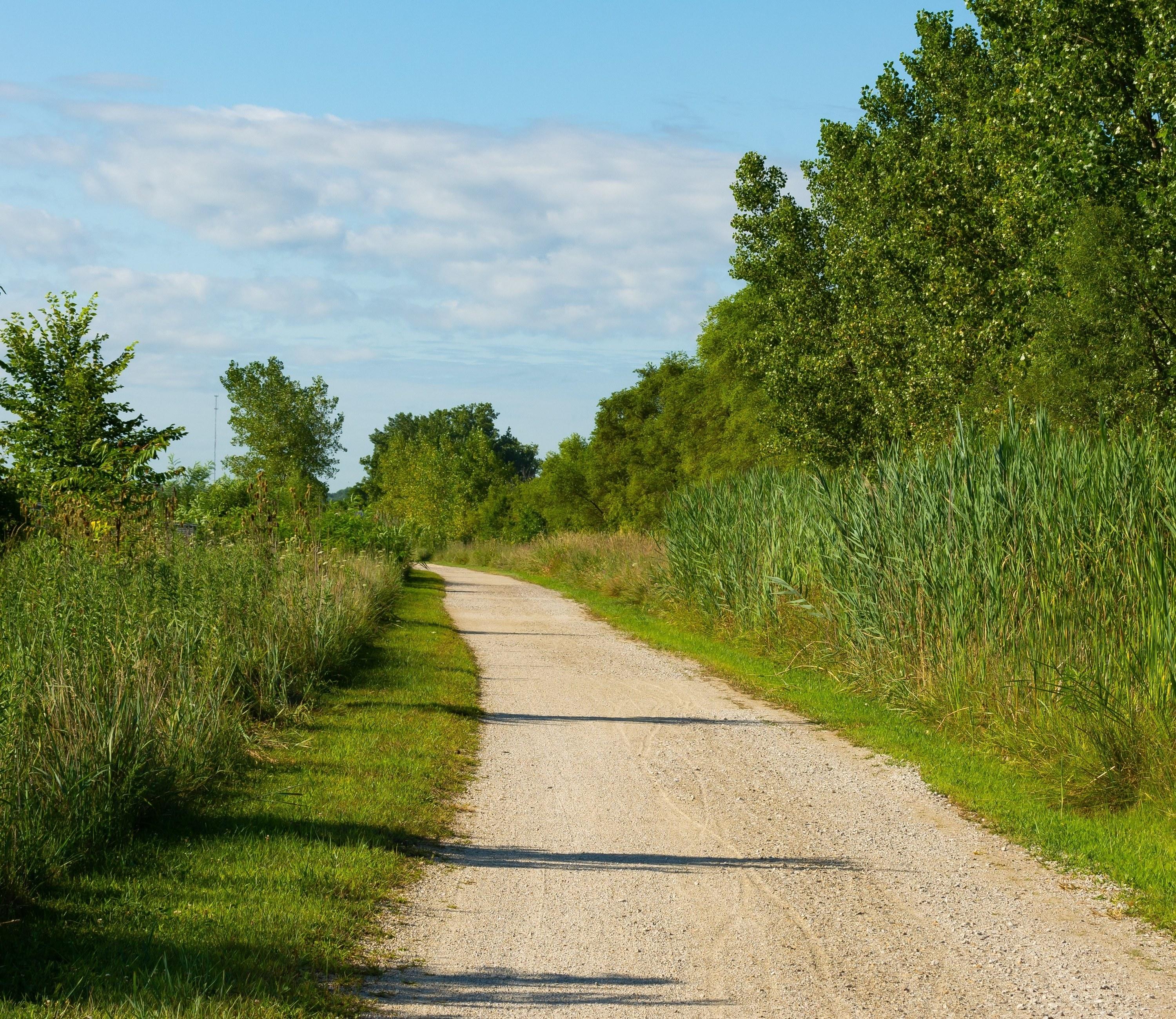 Photo of a trail on the Illinois & Michigan Canal State Trail