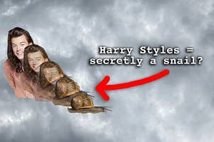 Harry Styles transforming into a snail