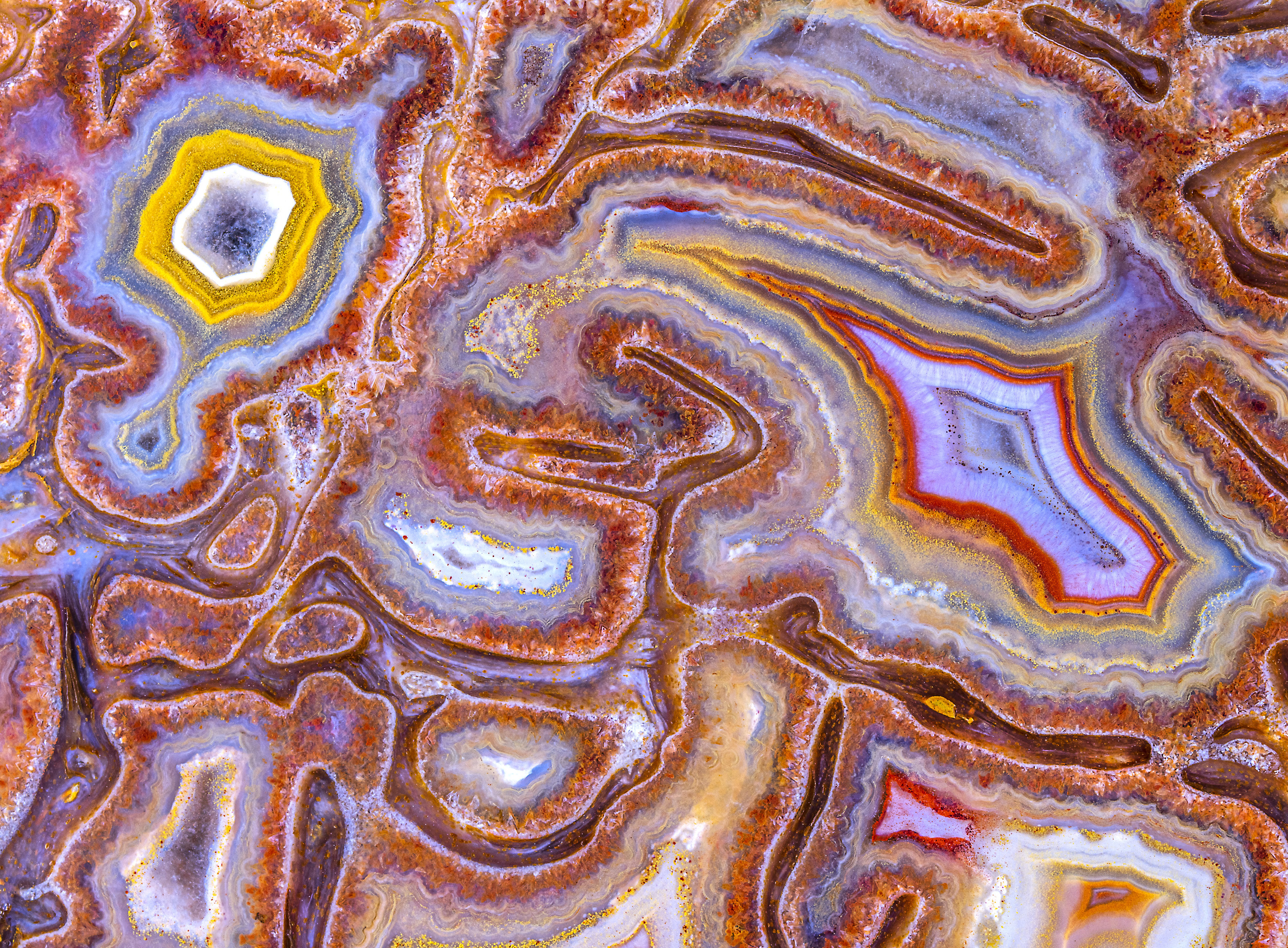Swirls and pockets of color on an agatized dinosaur bone,  magnified many times
