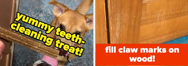 L: dogs looking longingly at teeth-cleaning stick treat R: wood door frame with claw marks on it