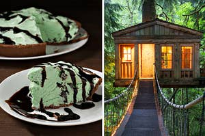 mint pie on the left and a tree house on the right