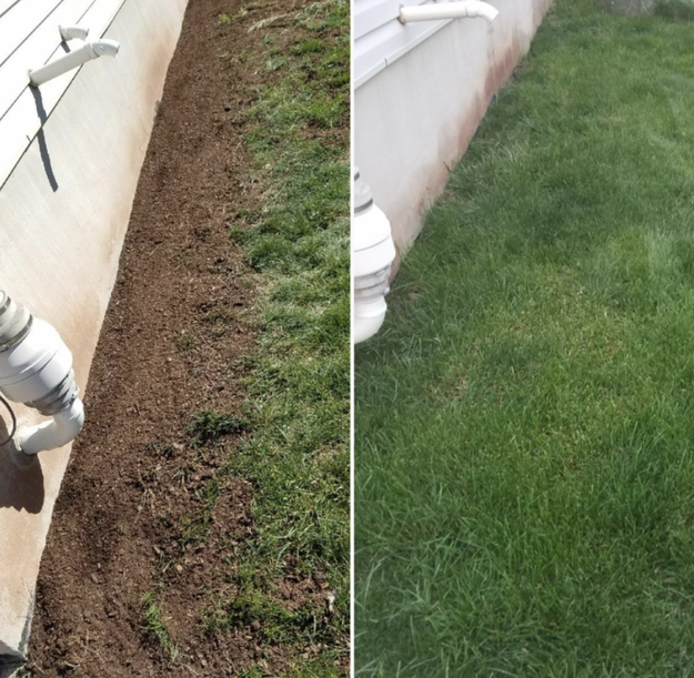 A reviewer's patchy lawn before using the product / A reviewer's lush lawn after using the product