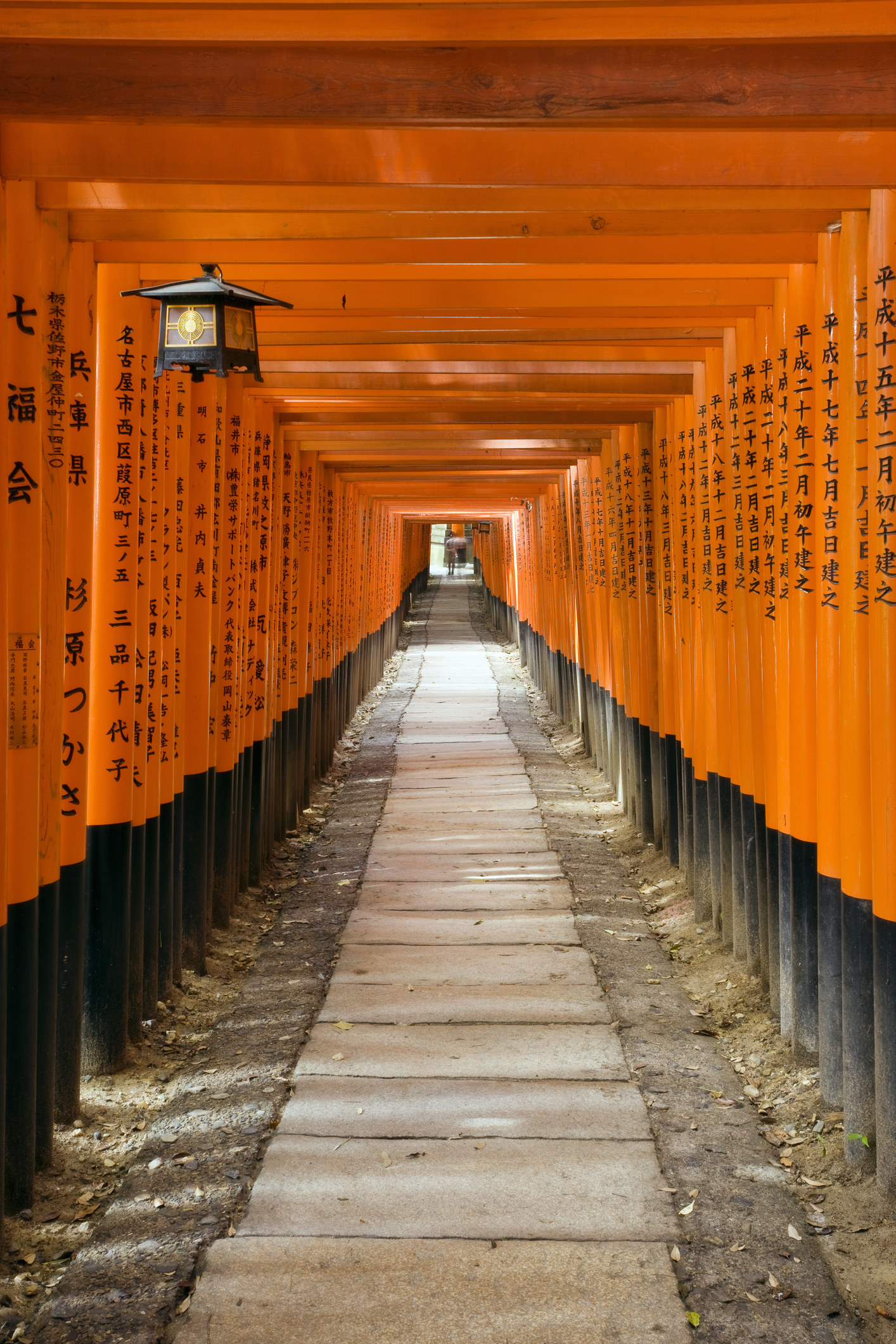 Torii gates at Fushimi Inari Shrine, Kyoto