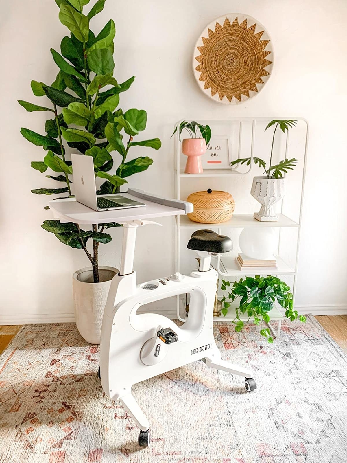 white stationary desk bike with laptop on top in front of plant stand