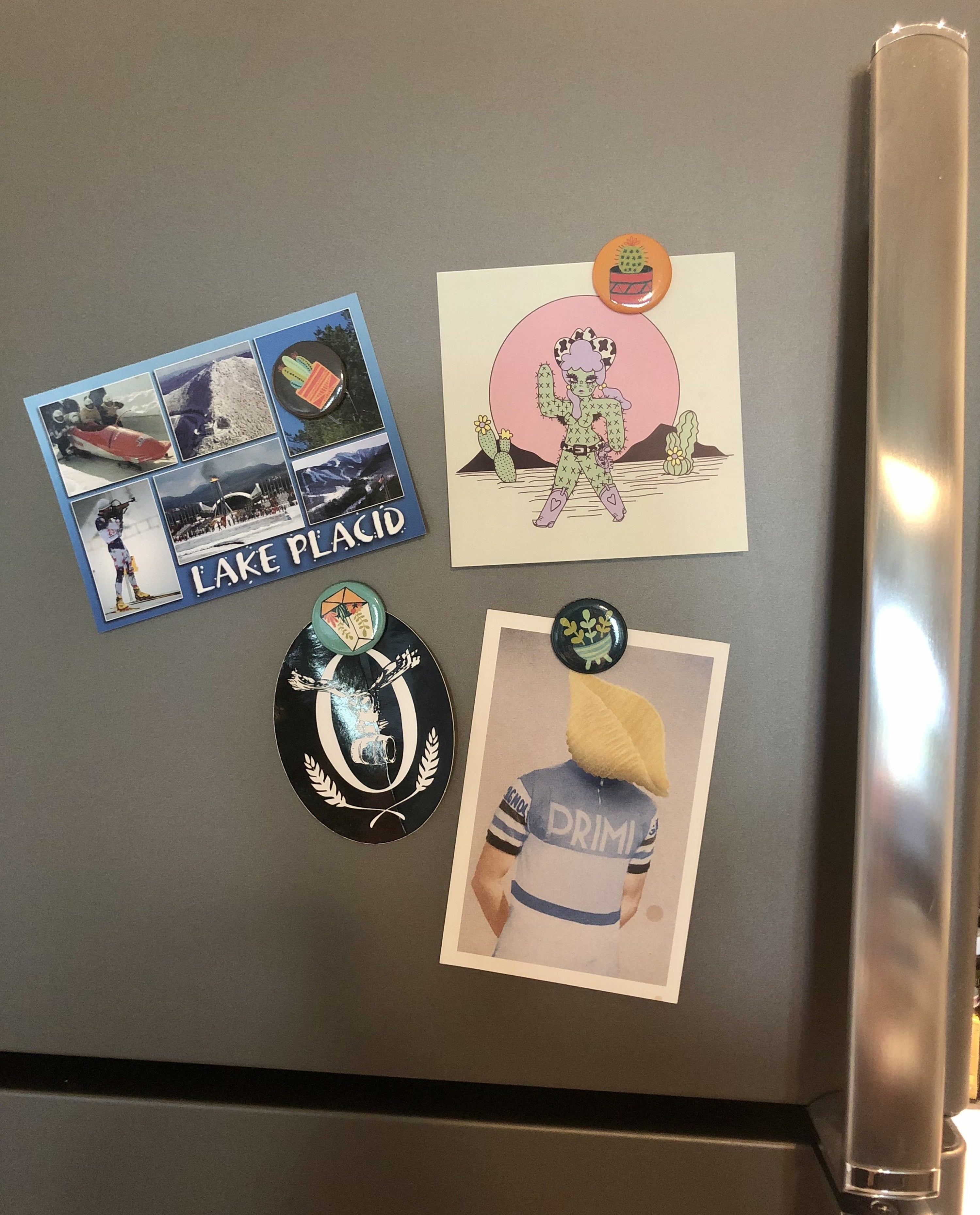 Circular magnets with pictures of small cactus plants holding up postcards on fridge door