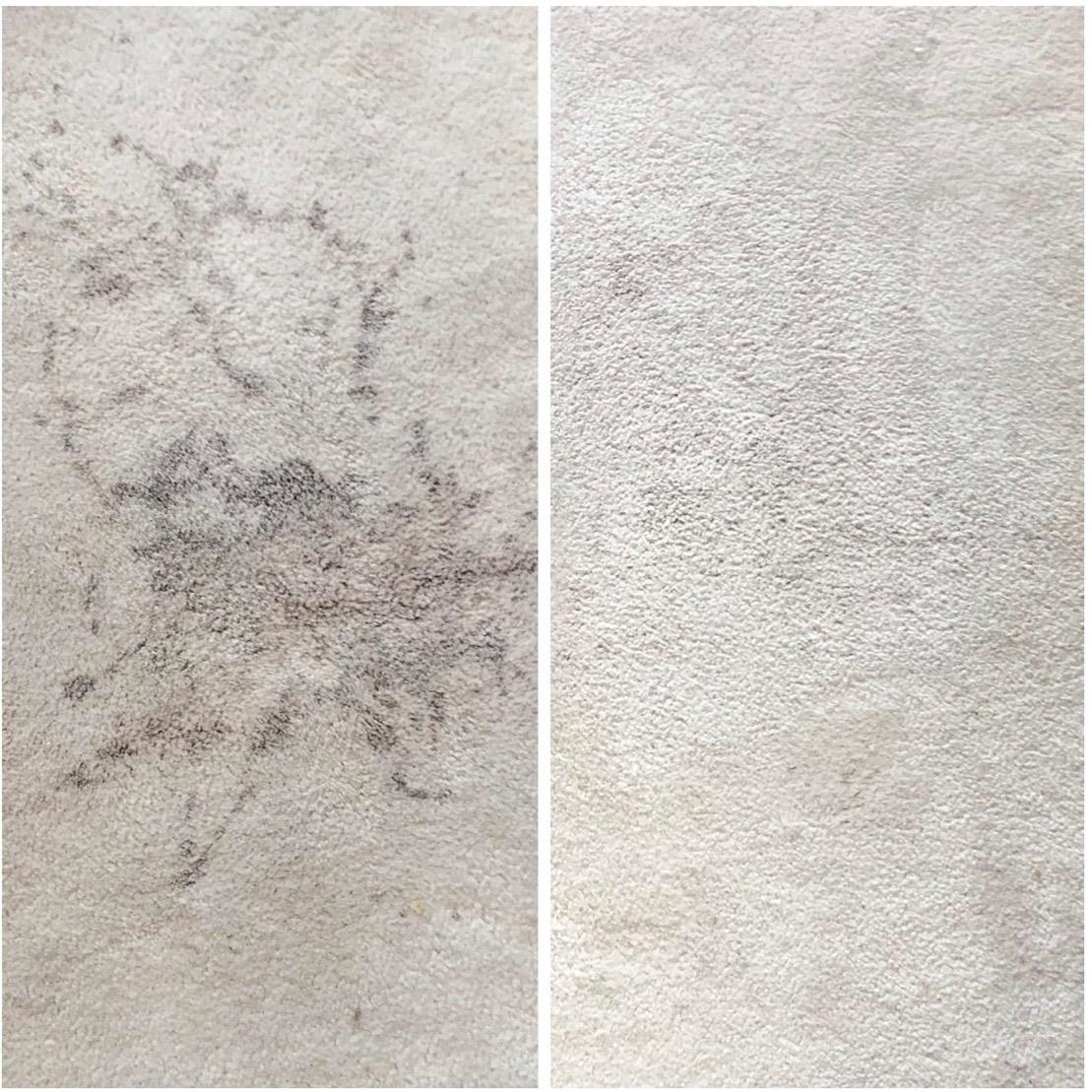 A reviewer's carpet before/after stain removal