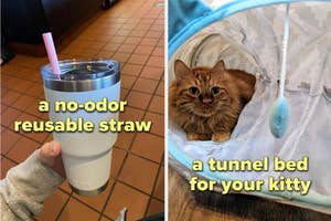 a reusable straw and a tunnel bed for cats