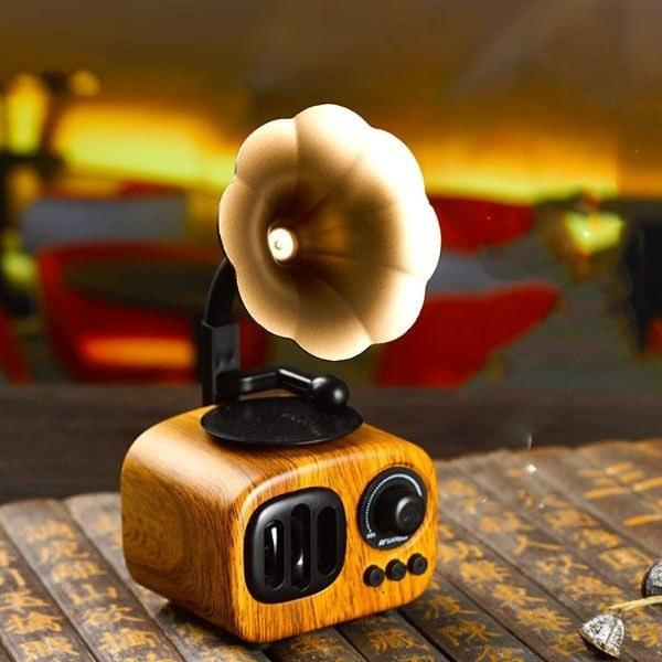 The small gramophone speaker