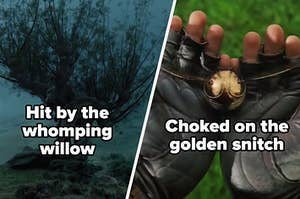 Hit by the whomping willow or choked on the golden snitch